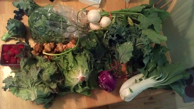 An early season share. Bok choy, strawberries, lettuce, hakurei turnips and a bunch more.